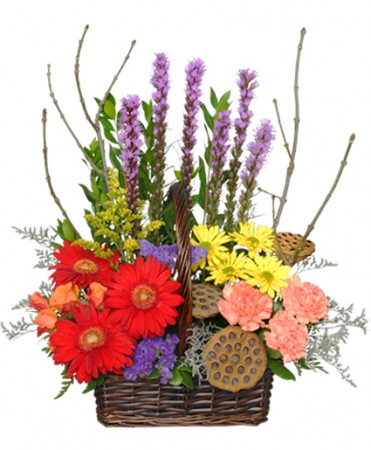 Best Selling Bouquets from Cole's Flowers