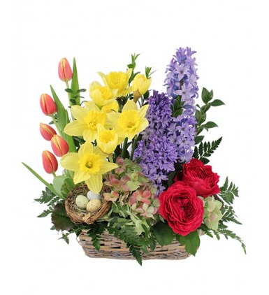 Floral Arrangement from Coles Flowers